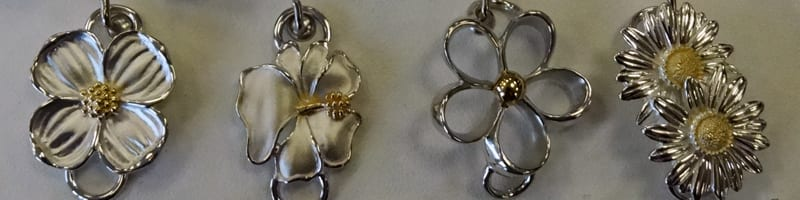 Picture showing LeStage clasps