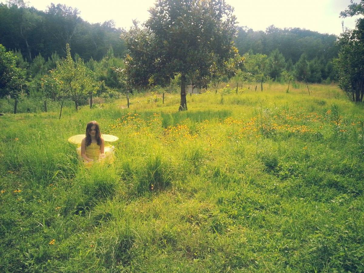 Girl in fairy costume in a field